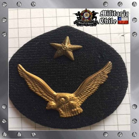 Escudete Gorra Antiguo FACH Dorado Old Gusset Air Force
