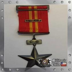 Servicios Distinguidos 2da Clase Ejercito Chilean Army Medal 11 Sep 1973