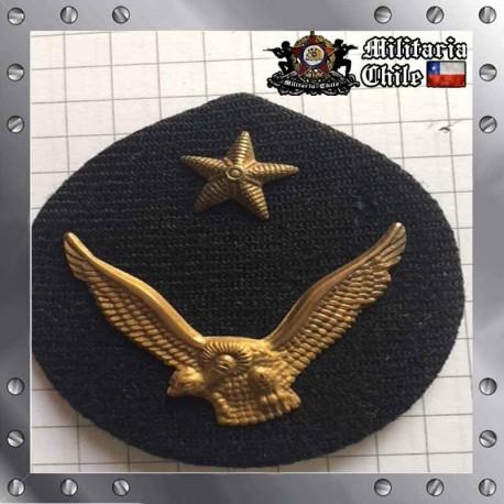 Escudete Gorra Antiguo FACH Dorado Old Gusset Air Force