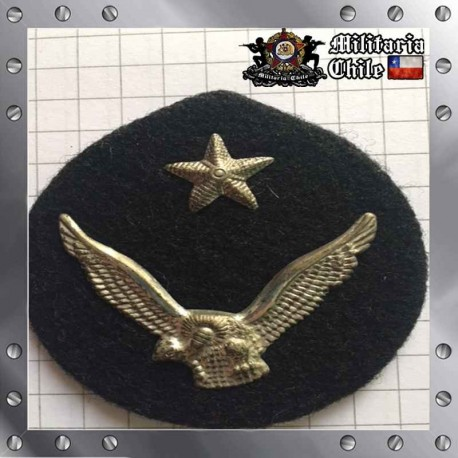Escudete Gorra Antiguo FACH Plateado Old Gusset Air Force