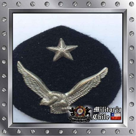 Escudete FACH Escuela de Aviacion Chilean Air Force Medal