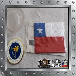 Lote coin y parche bandera chilena, coin and patche chilean flag.