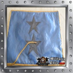 Banderin escritorio general de brigada Fach , desk pennant air force general